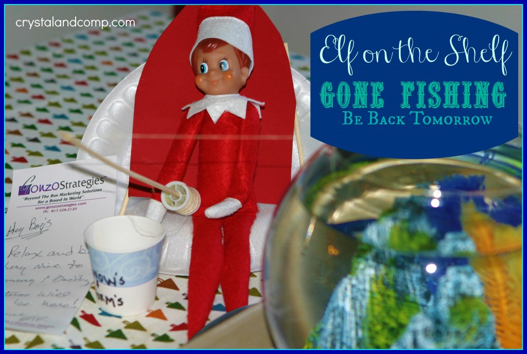 elf on the shelf photos