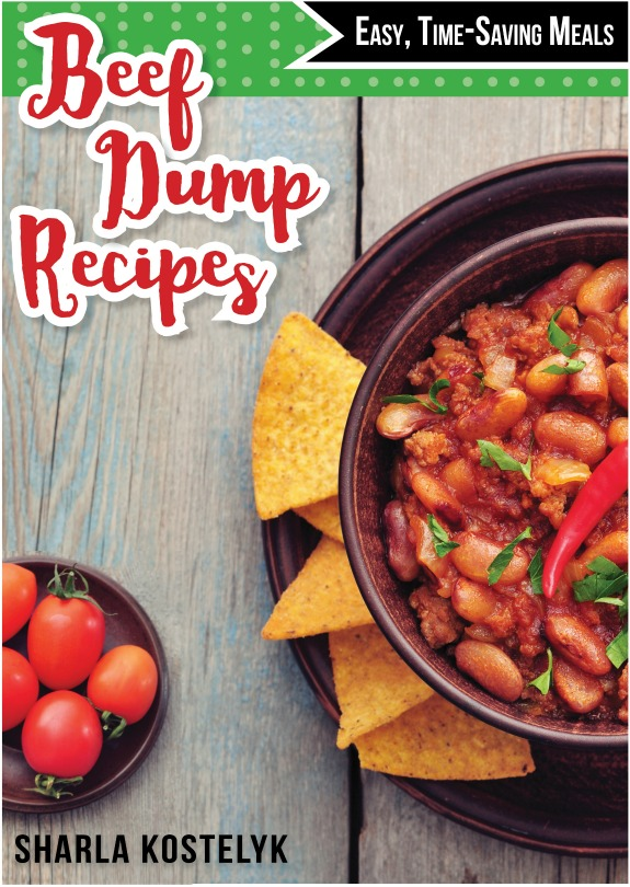 Beef-Dump-Recipes-cover-small