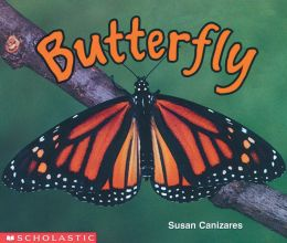 Butterfly by Susan Canizares