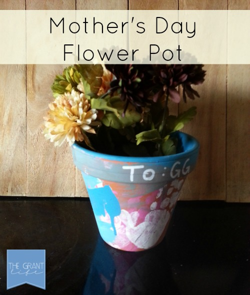 Mothers Day Gift Ideas Fower Pot