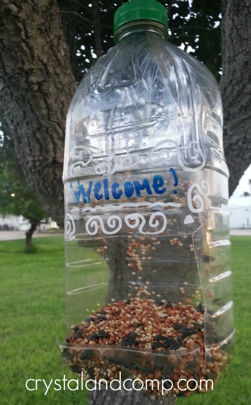Make a DIY bird feeder