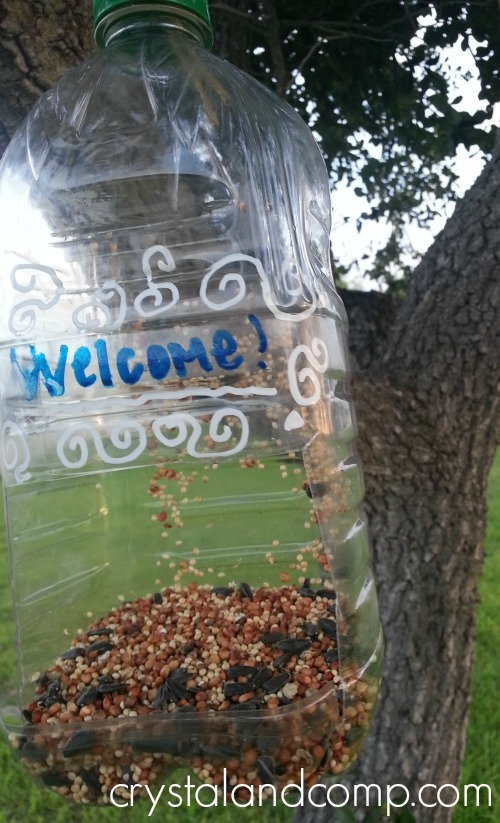 summer activities for kids: how to make a bird feeder