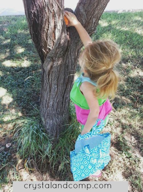 activities for kids: pumpkin hunt