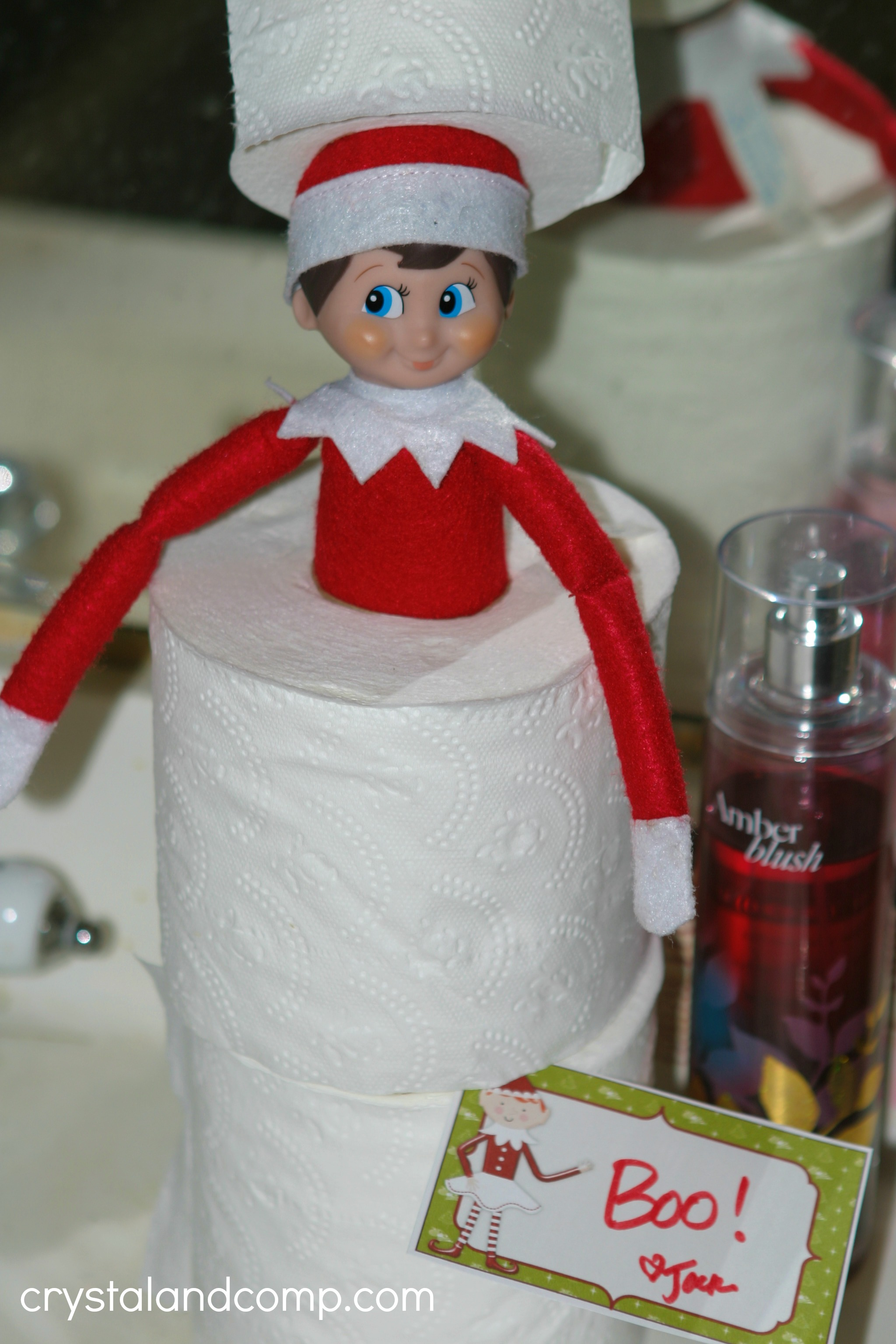 Elf on the Shelf Ideas Using Toilet Paper