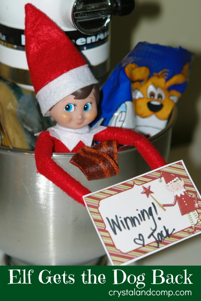 elf on the shelf ideas- elf gets the dog back
