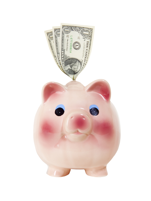 Piggy Bank with Money - Photo Object