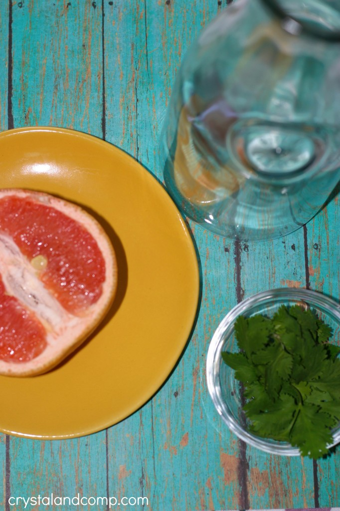 Fruit Infused Water Grapefruit and Cilantro