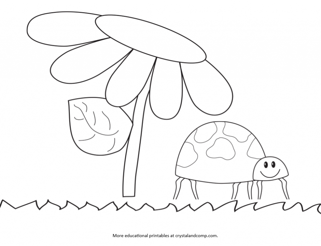 Coloring pages of ladybugs for kids - Color Pages For Kids Lady Bug