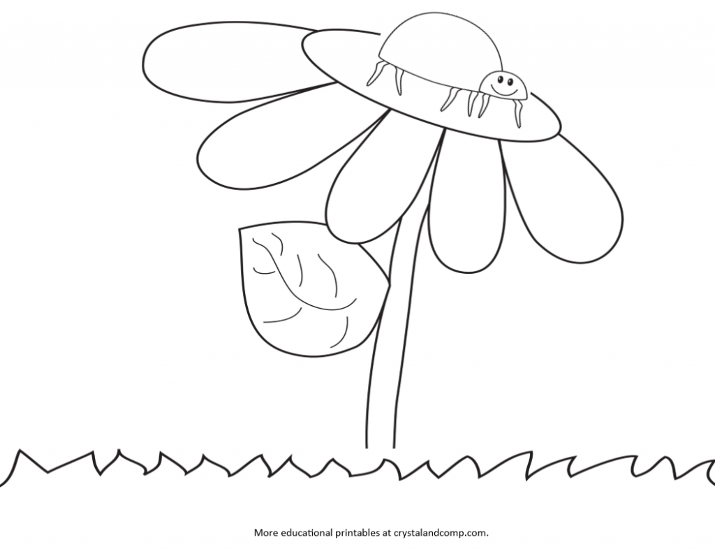 Coloring pages of ladybugs for kids - Kids Color Pages Young Lady Bug