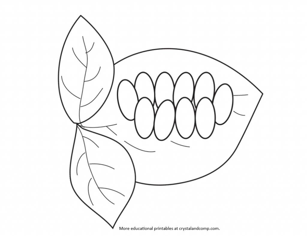 Free coloring pages of butterfly life cycle - Lady Bug Eggs Kid Color Pages
