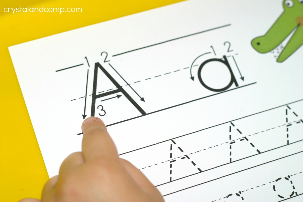 a is for alligator trace the letter