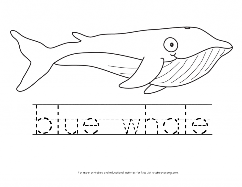 kid color pages blue whale