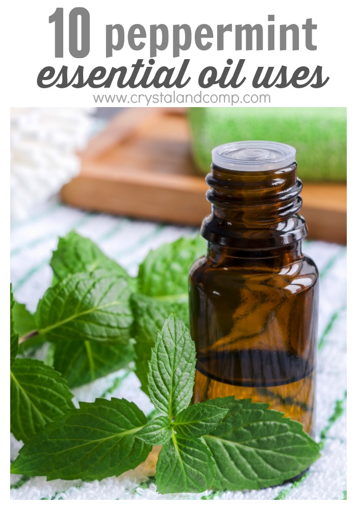 peppermint essential oil uses
