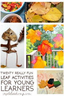Over 20 Leaf Activities for Young Learners