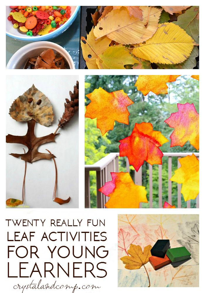 more-than-20-leaf-activities-for-kids- (1)