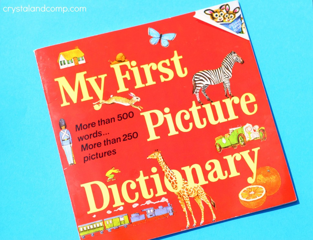 my first picture dictionary book