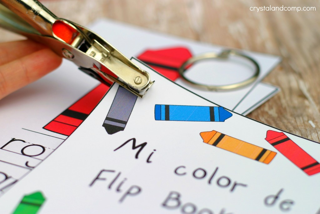 use a hole punch to make flash cards a flip book