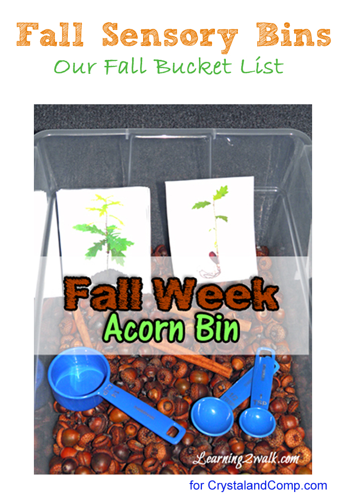 fall activities for preschoolers-fall sensory bins