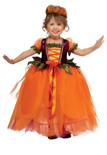 pumpkin princess costume - Halloween Princess Costumes For Toddlers