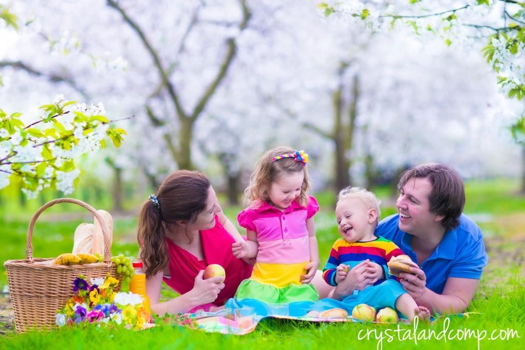 family picnic ideas