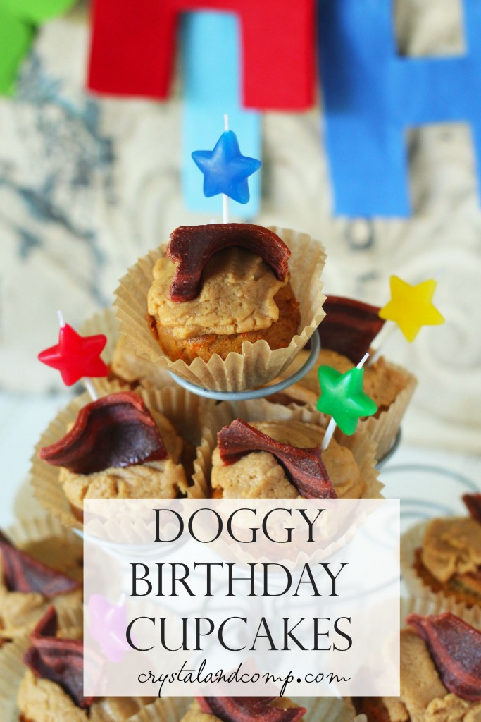 doggy birthday cupcakes (1)