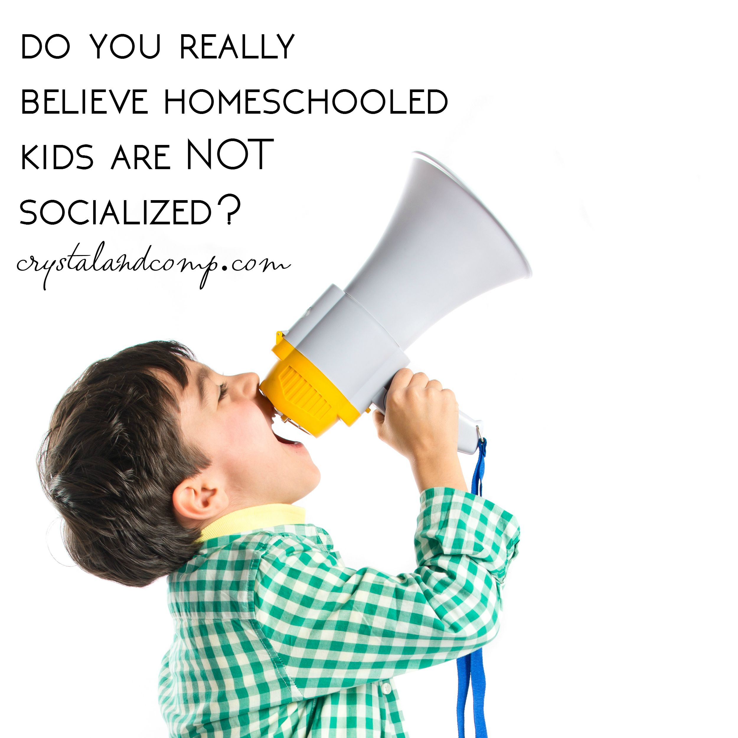homeschool myths about socialization homeschooled kid myths