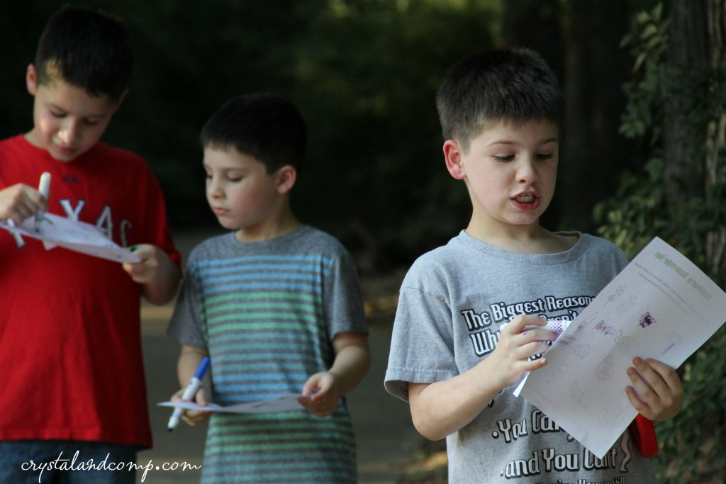 nature scavenger hunt for science