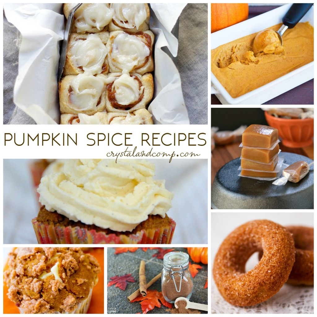 pumpkin spice recipes (1)