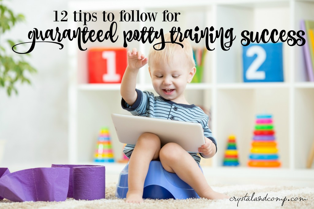 12 tips to follow for guaranteed potty training success