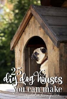 25 Easy DIY Dog Houses You Can Make