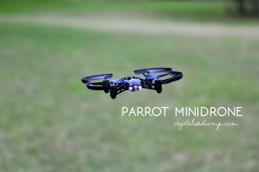 parrot minidrone (2)