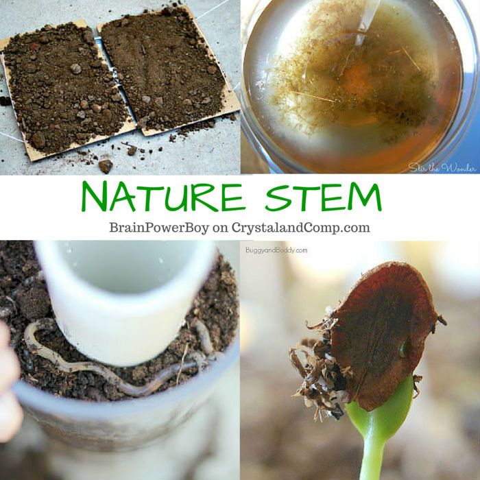 Nature STEM activities for boys that they are going to love. You know, the kind with worms, ants, dirt, mud and water.