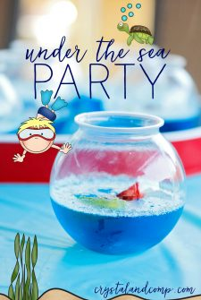 Under The Sea Party Theme for Kids