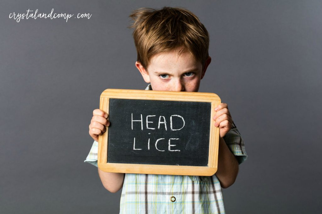 keep head lice away