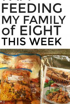 Large Family Meal Plan Week 230
