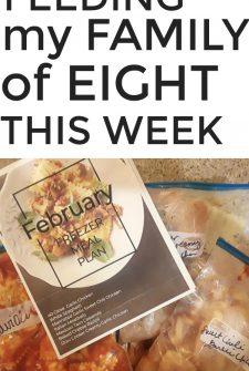 Large Family Meal Plan Week 232