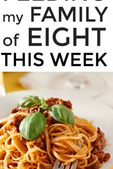 Large Family Meal Planning Week 249