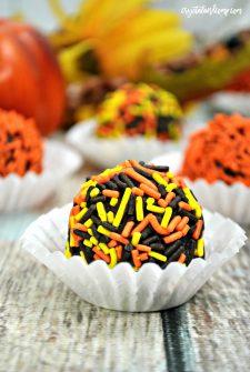 Pumpkin Spice and Chocolate Cake Balls