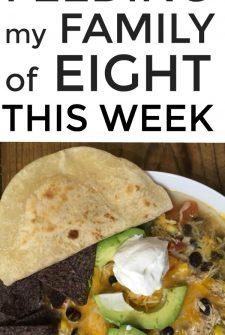 Large Family Meal Plan Week 254