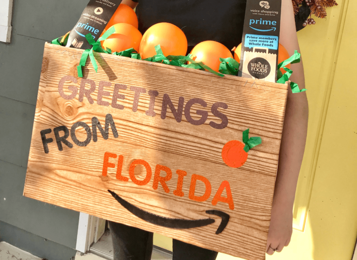 DIY Florida Oranges Halloween Costume