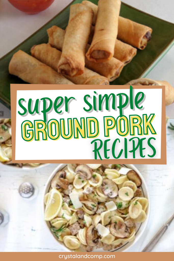 simple ground pork recipes